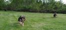 valper i farta